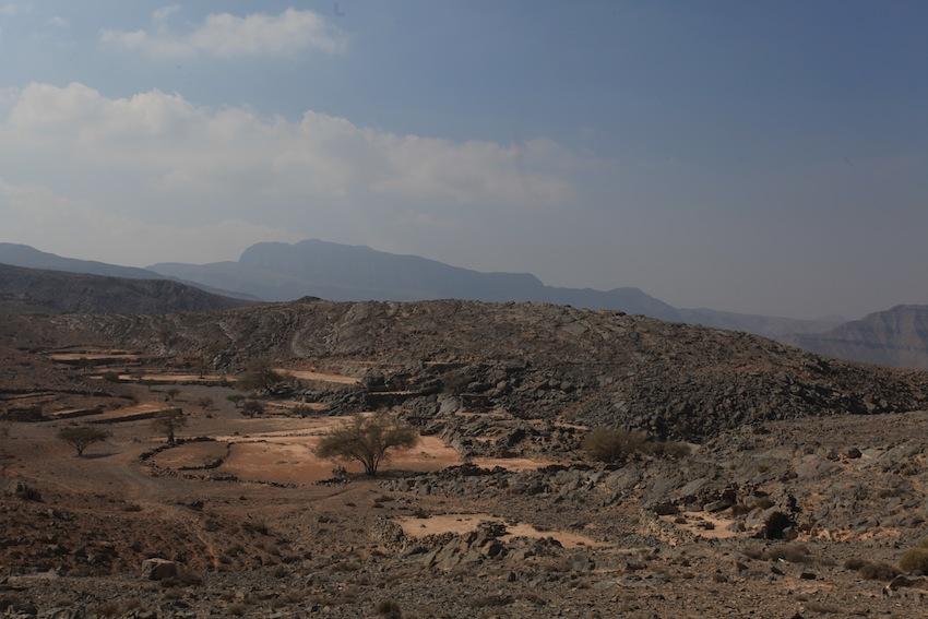 Desert Oman (4)