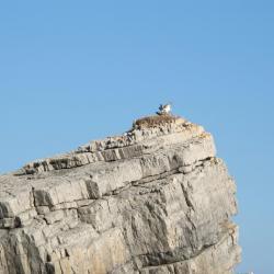 vue terrestre Oman (3)