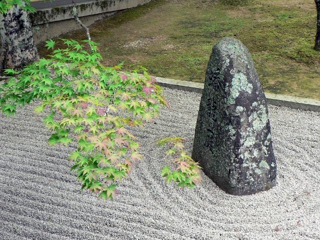 Jardin Témoin