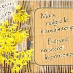 Dictons du mois de mars