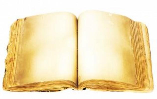 Livre nouveau la sagesse 19 118790